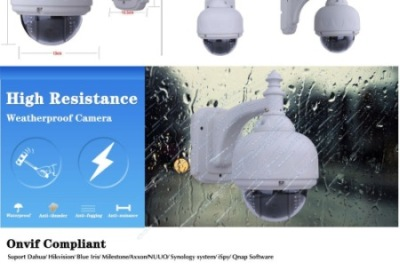 Pan Tilt Outdoor Dome Camera Outside In Rain