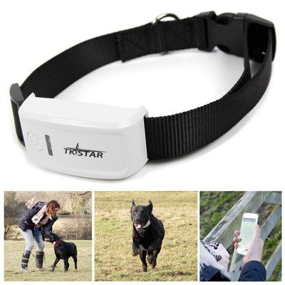 Pet GPS Cat Tracking Collar In Black And White