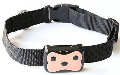 Accurate GPS Activity Tracker For Pets With Black Band