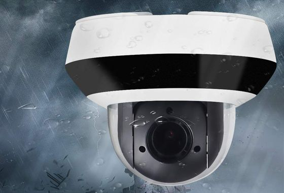 PTZ Dome Security Camera In Black And White