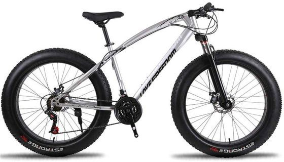 MTB Fat Bike With Black Leather Saddle