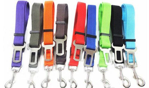 Multi Colours Dog Harnesses
