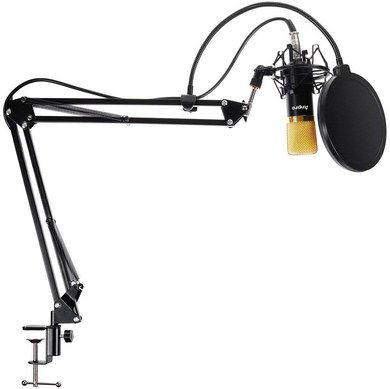 Studio Microphone Set With Fixing Clamp