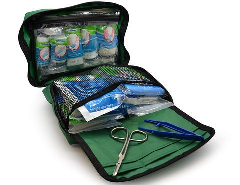 Small First Aid Kit In All Green