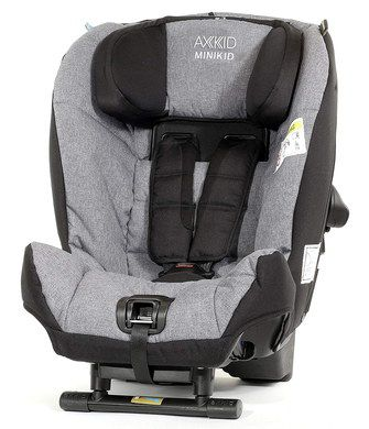 Rearward Car Seat In Light Grey