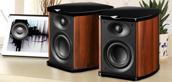 Bookshelf Speakers In Wood And Black