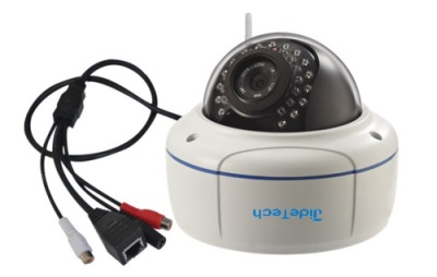 Dome Security Camera In White And Black