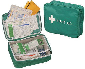 Vehicle Safety Kit In Nylon Case In Green Container