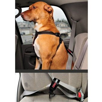 Ergonomic Car Harness For Big Dogs In Black Textile