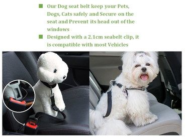 Steel Buckle Pet Travel Harness Seat Belts